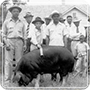 black farmers image collection homepage Member Stories